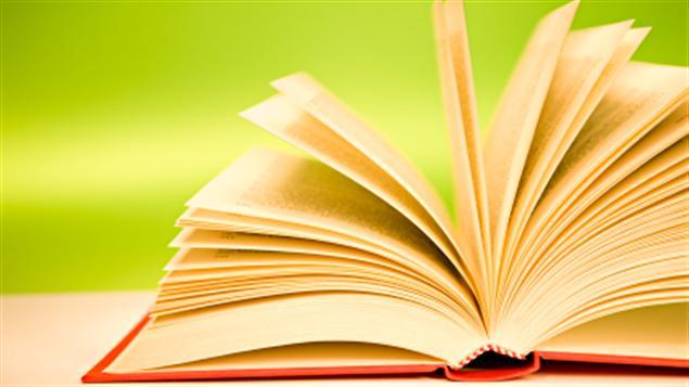 phat bieu cam nghi ve tac pham van hoc - Phát biểu cảm nghĩ về tác phẩm văn học