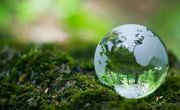 Suy nghĩ của em về môi trường hiện nay