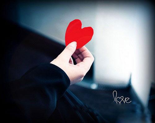 Tình thương là hạnh phúc của con người