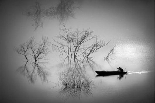 Phân tích bài thơ Câu Cá Mùa Thu của tác giả Nguyễn Khuyến