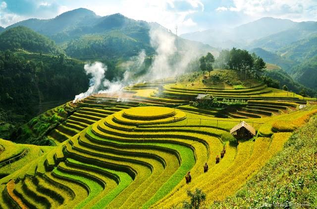 Phân tích bài thơ Việt Bắc của nhà thơ Tố Hữu